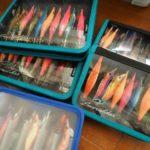 秋のアオリイカは2.5号のエギで数釣りを楽しもう