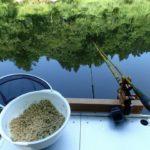 同じ餌でも練り方で釣れる餌に変わったヘラ釣り